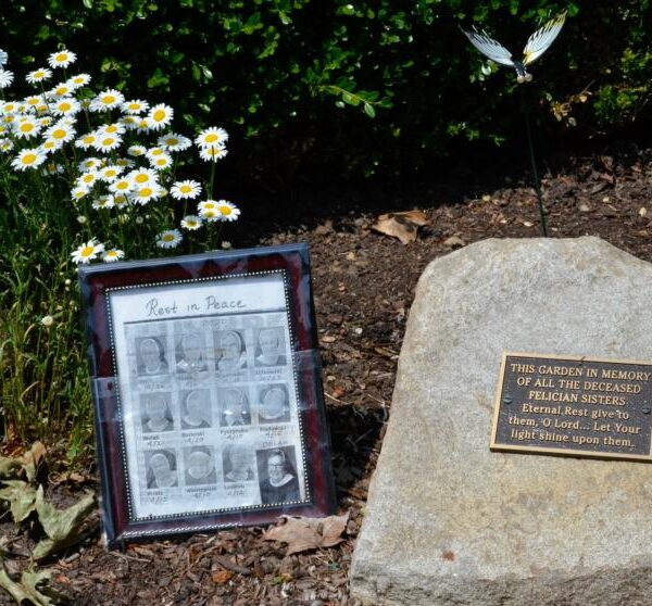 'Our most tragic time': Felician sisters bear loss of 13 sisters to COVID-19