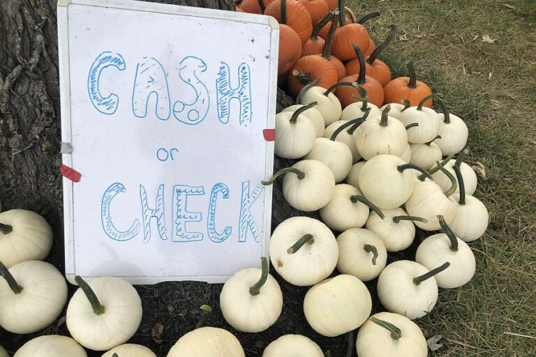 Halloween 2020 Catholic Review It's fall, a different kind of Halloween, reasons to travel, and